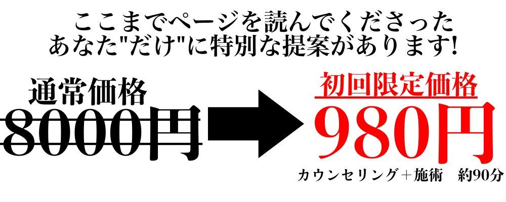 整体料金説明980円