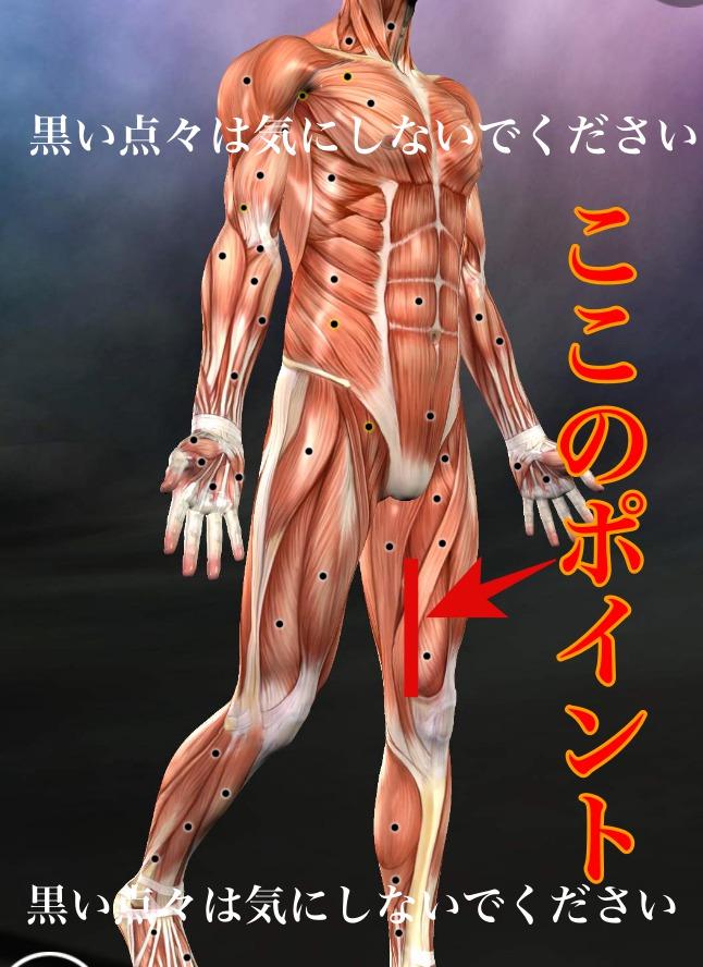 膝痛の原因ハンター管