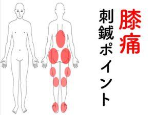 膝の針治療